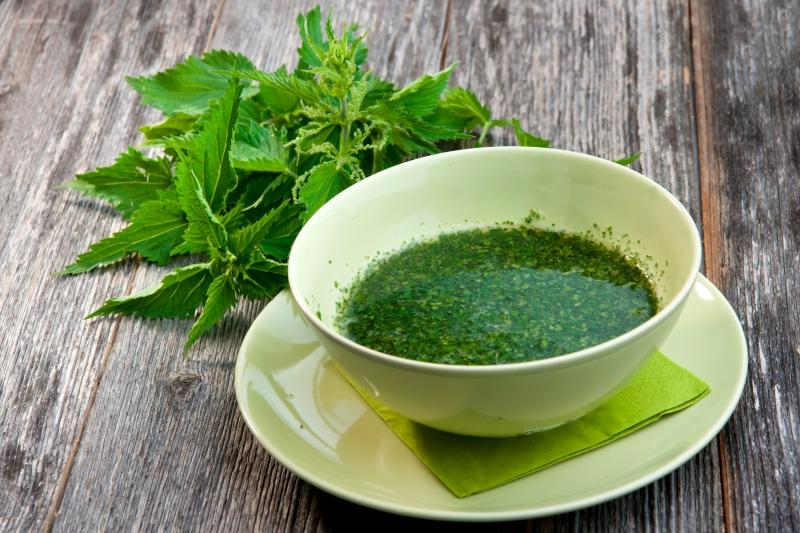 чай с крапивой от варикоза