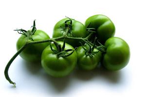 лечение варкоза помидорами