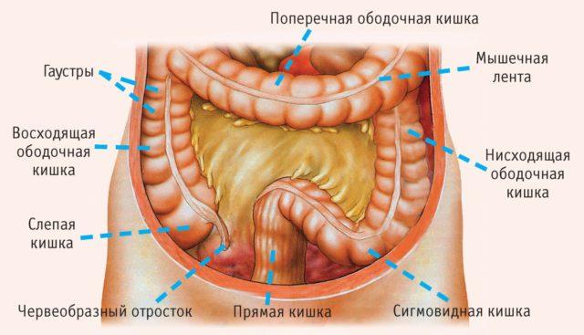 Тромбоз кишечника тт