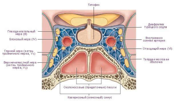 лечить тромбоз кавернозного синуса