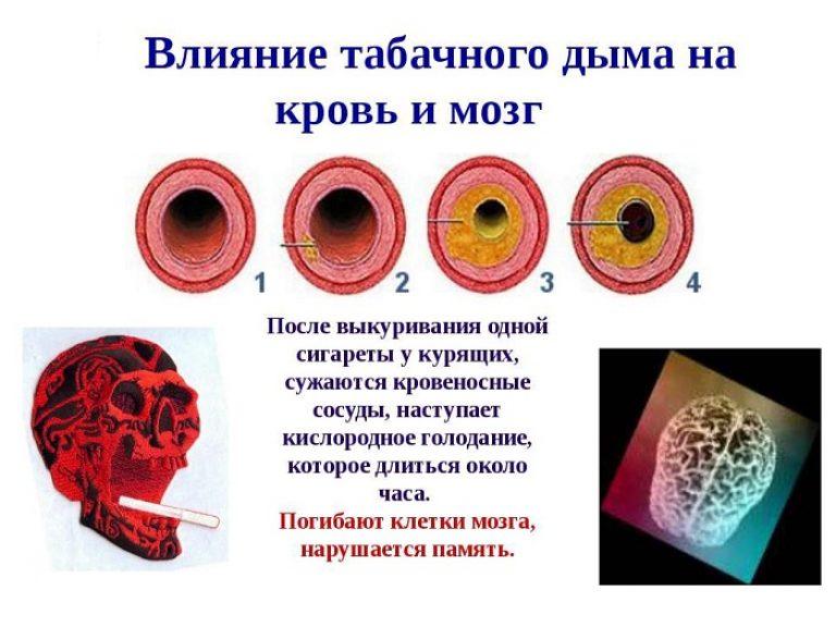 влияние табачного дыма