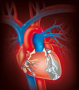 инфаркта миокарда.юююю