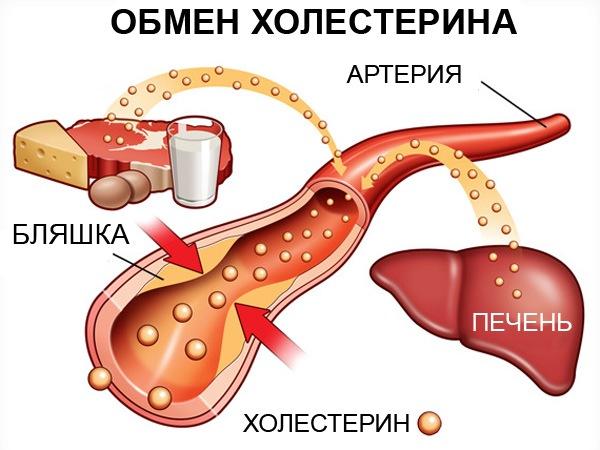 вредного холестерина