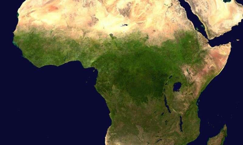 Почему вспышка коронавируса в Африке выглядит медленнее, чем предполагалось